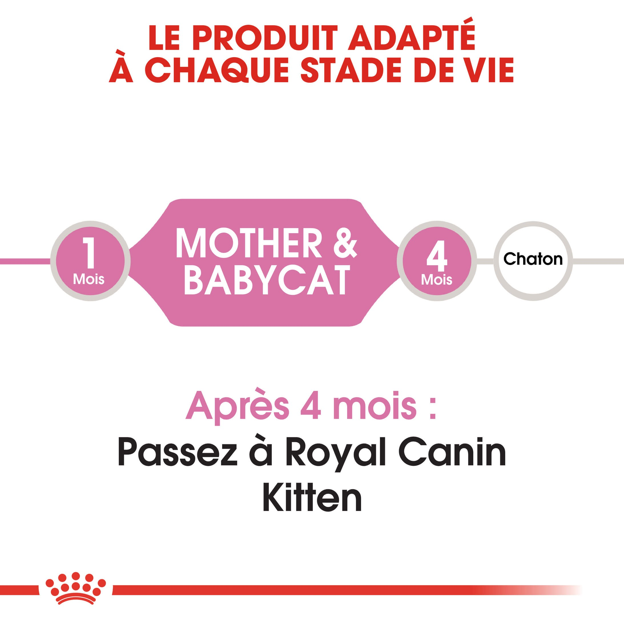 Royal Canin Chaton Babycat 34