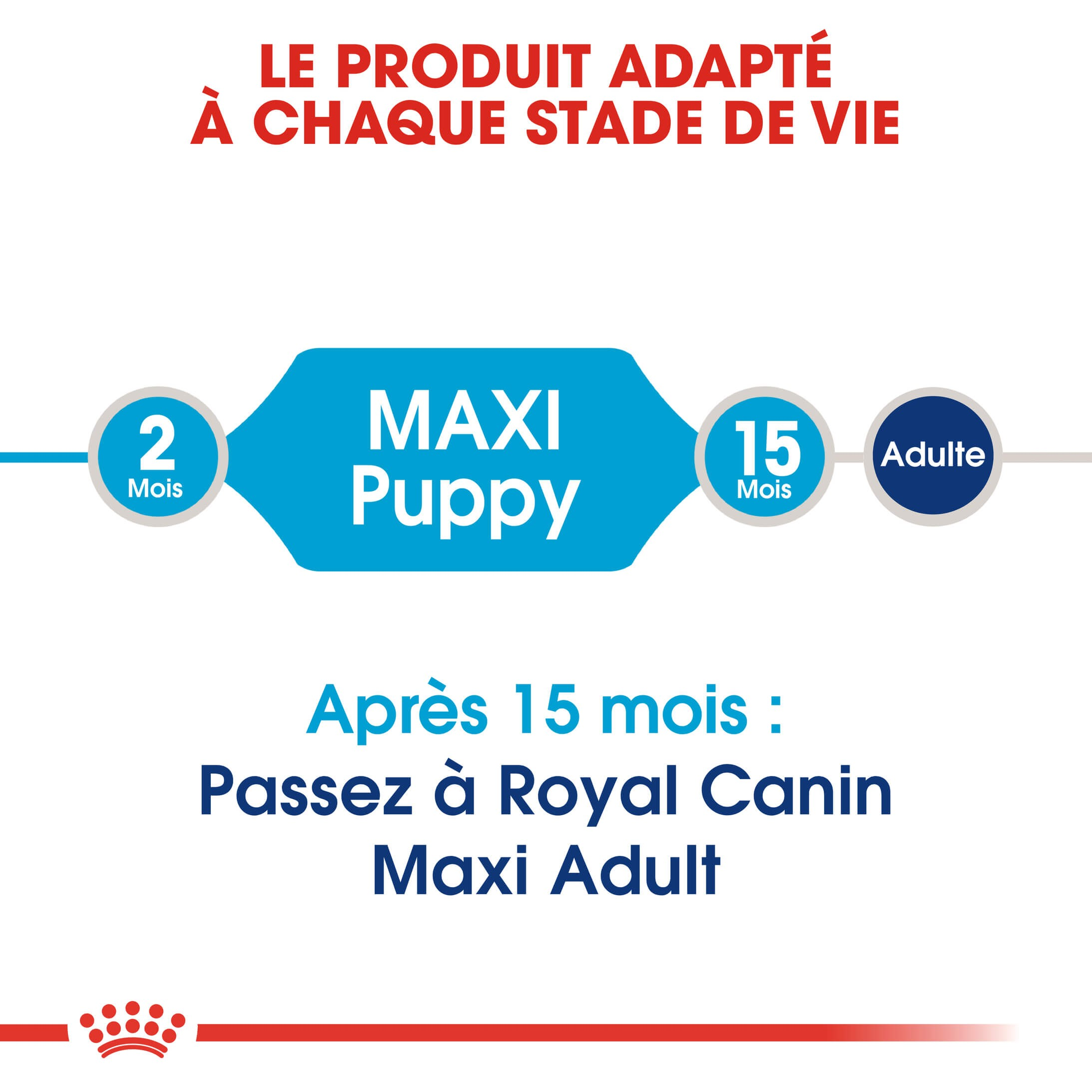 Royal Canin Maxi Puppy pour chiot