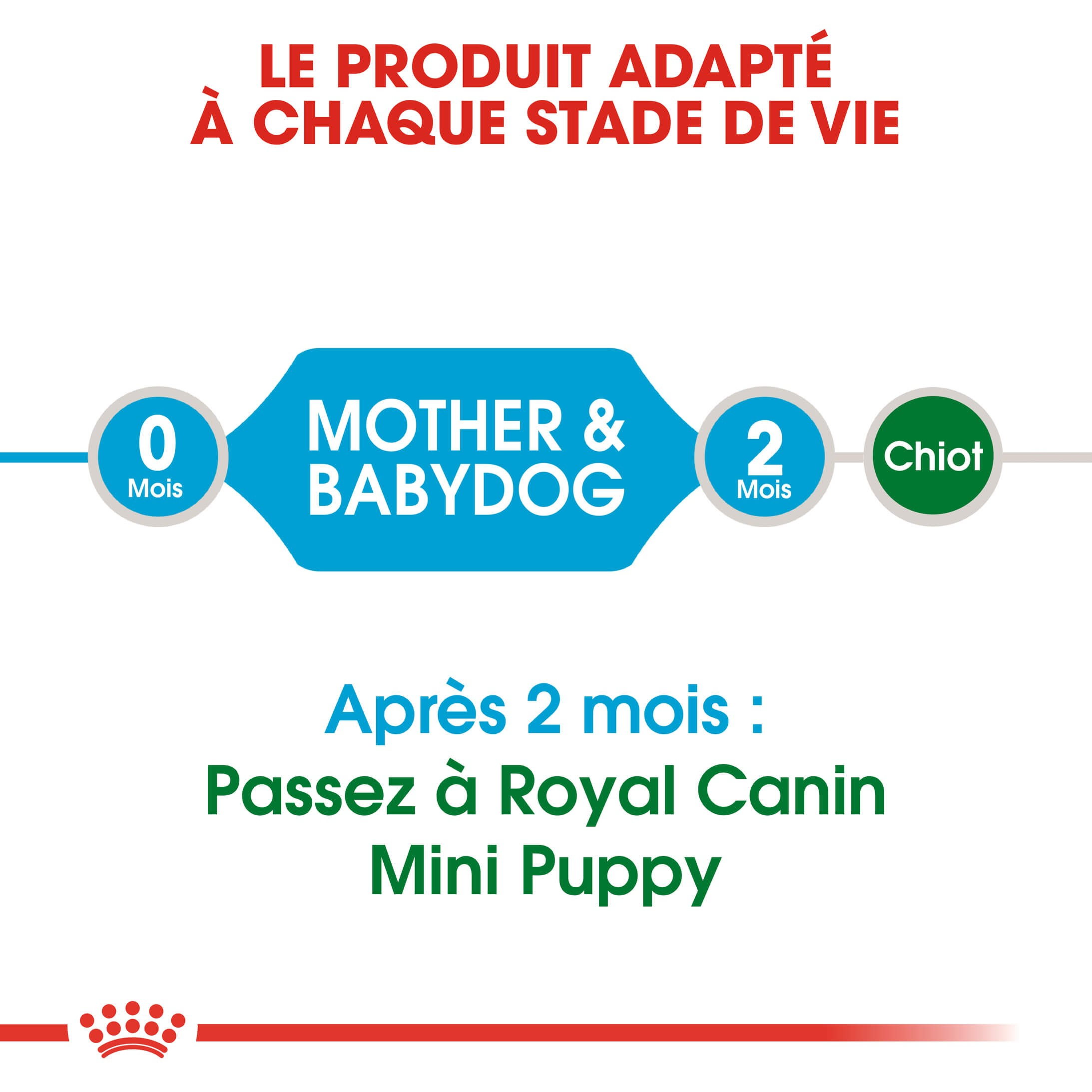 Royal Canin Mini Starter Mother & Babydog pour chiot