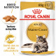 Royal Canin Maine Coon Adulte Pâtée
