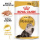 Royal Canin Persian Adule Pâtée