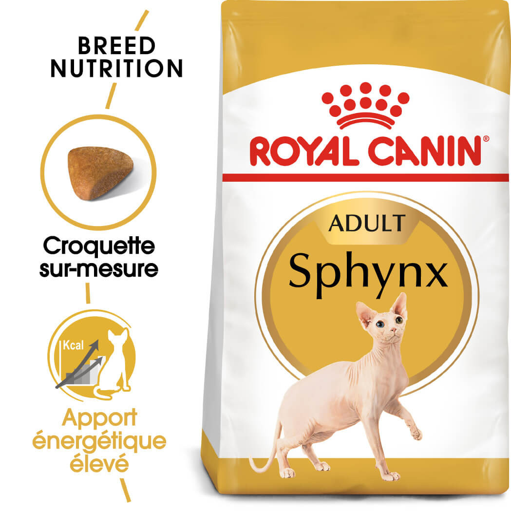 Royal Canin Chat Sphynx 33