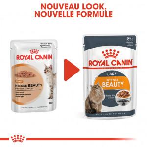 Royal Canin Intense Beauty Chats