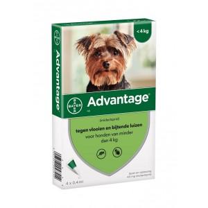 Advantage Nr. 40, vlooienmiddel voor honden