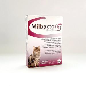 Milbactor Ontwormingsmiddel Grote Kat