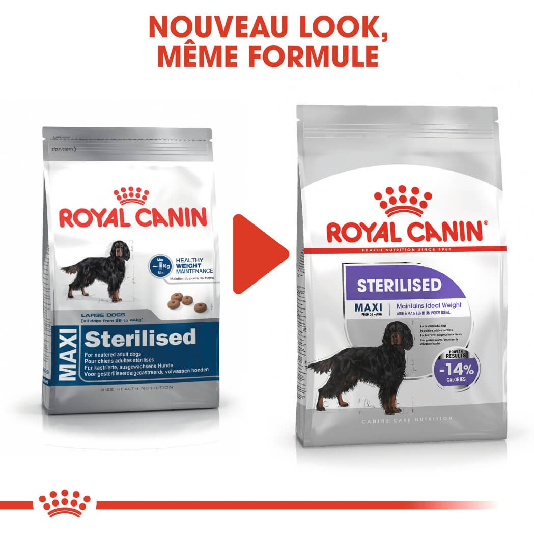Royal Canin Maxi Sterilised pour chien