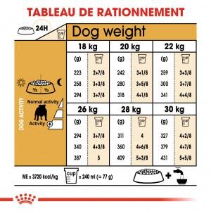 Royal Canin Bulldog Anglais Adult pour chien