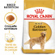Royal Canin Adult Golden Retriever pour chien