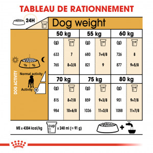 Royal Canin Adult Dogue Allemand pour chien