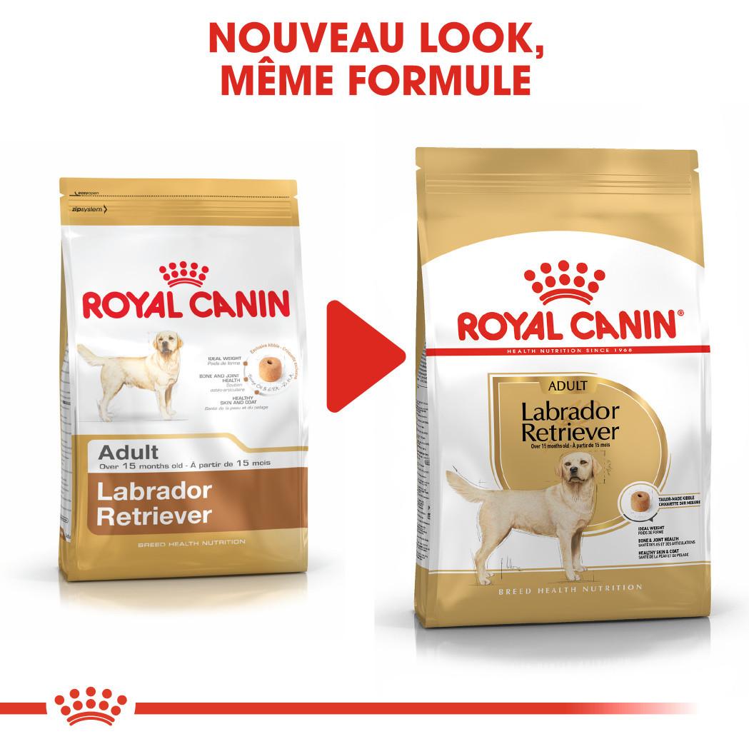 Royal Canin Labrador Retriever Adult pour chien