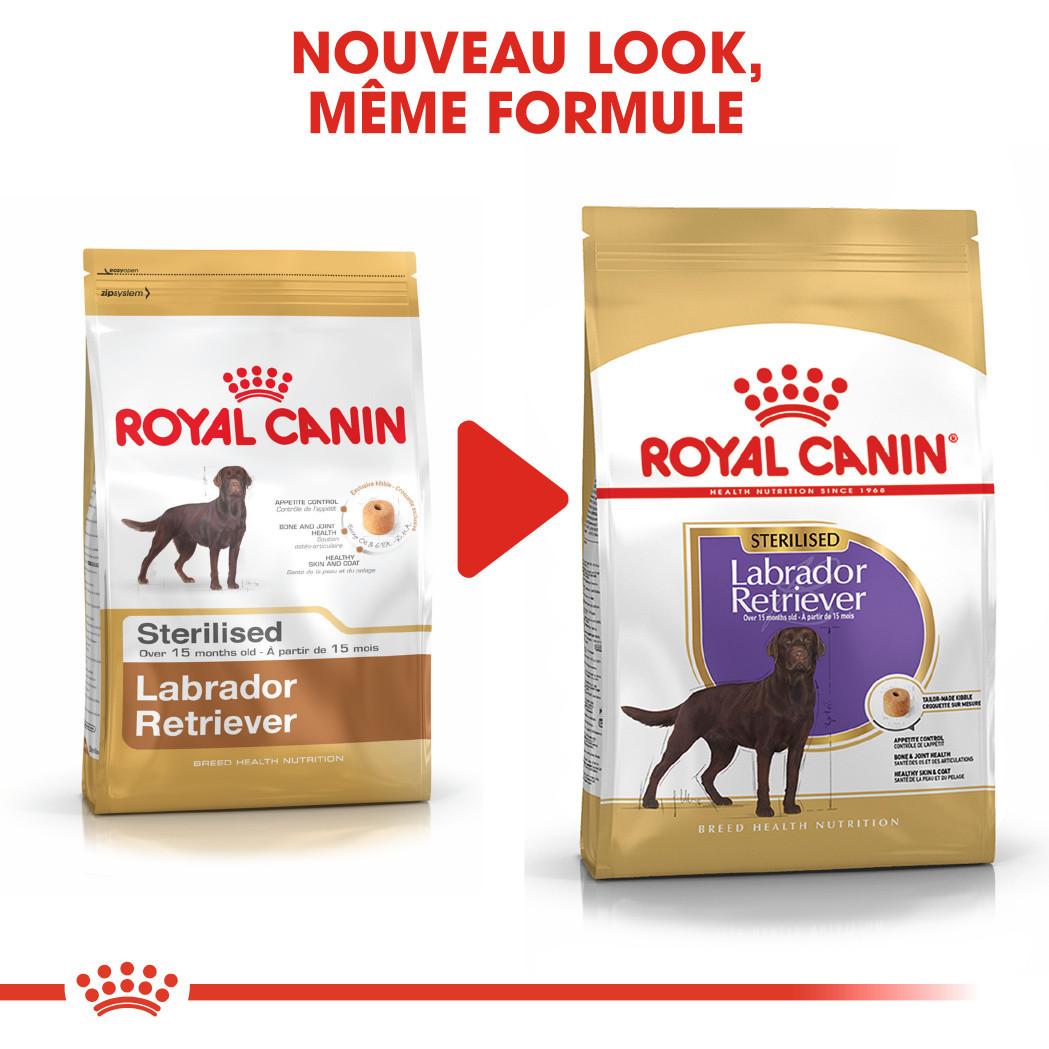 Royal Canin Sterilised Adult Labrador Retriever pour chien