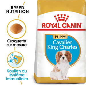 Royal Canin Puppy Cavalier King Charles pour chiot