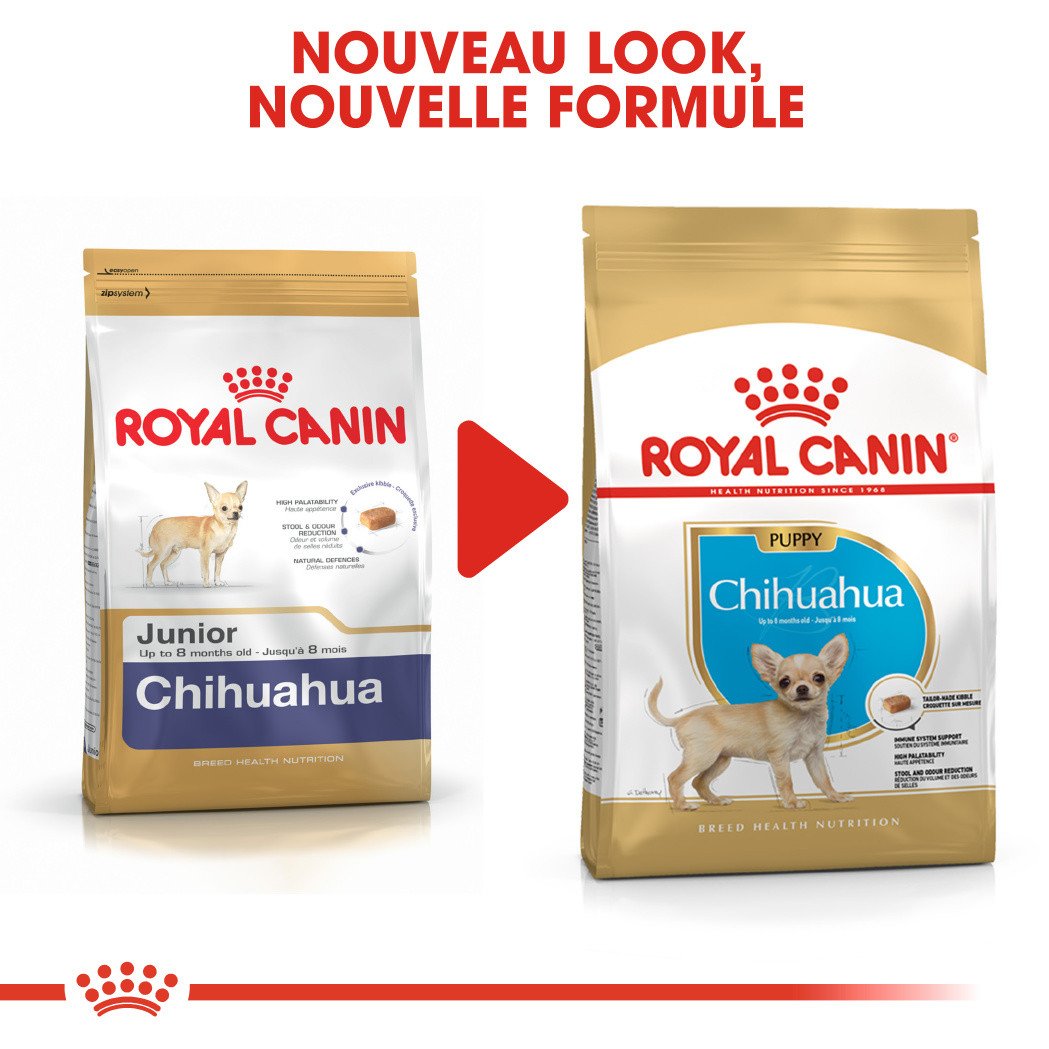 Royal Canin Puppy Chihuahua pour chiot