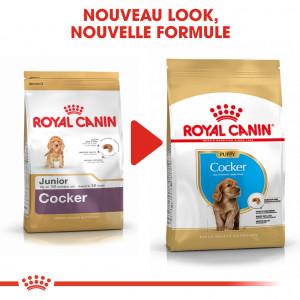 Royal Canin Puppy Cocker Spaniel pour chiot