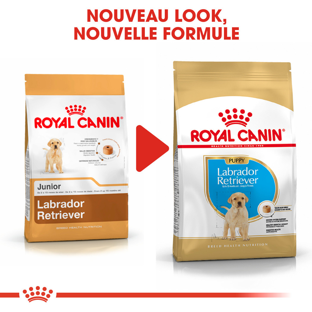 Royal Canin Labrador Retriever Puppy pour chiot