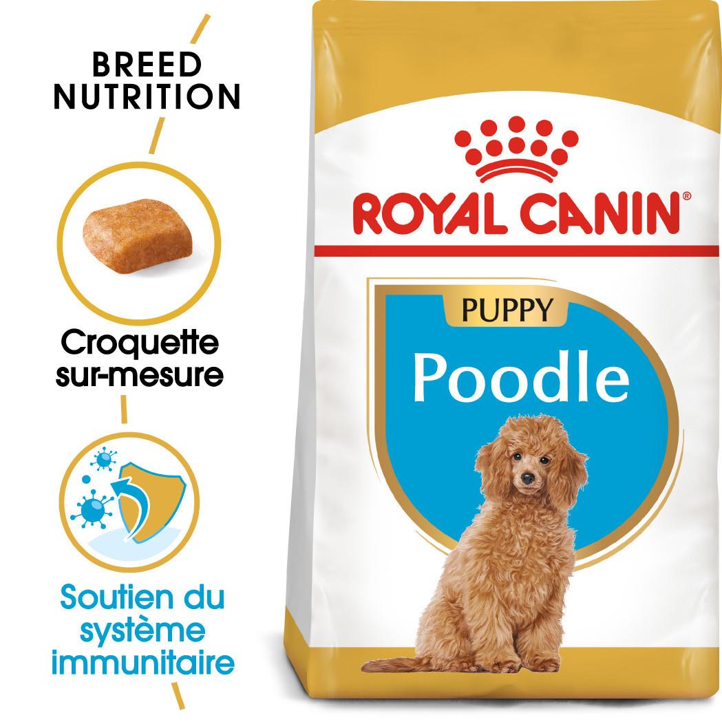 Royal Canin Poodle 33 junior hondenvoer