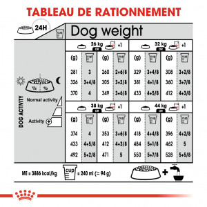 Royal Canin Maxi Digestive Care pour chien