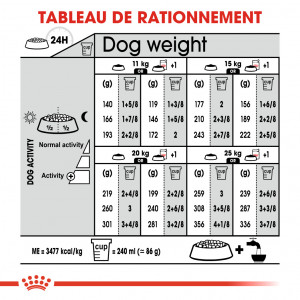 Royal Canin Medium Sterilised pour chien