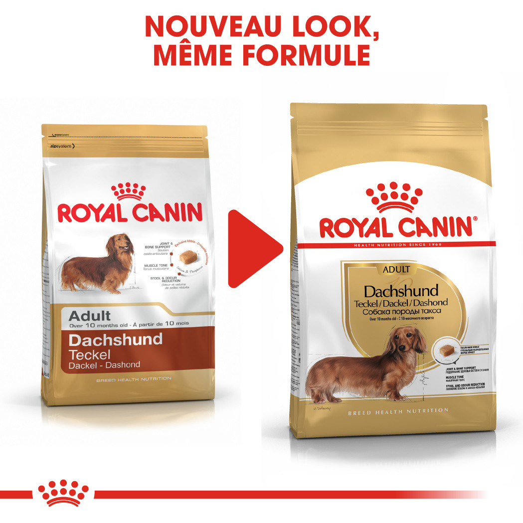 Royal Canin Adult Teckel pour chien