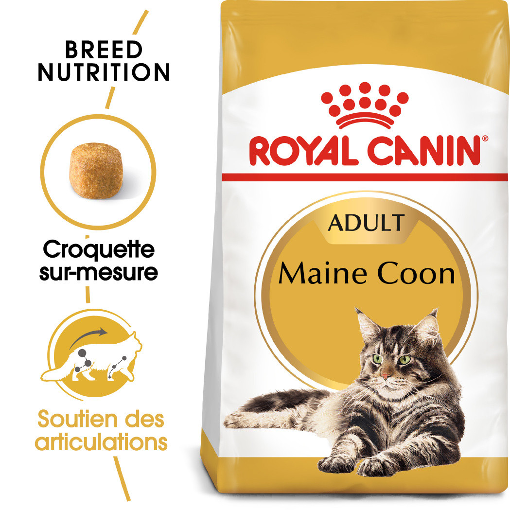 Royal Canin Chat Maine Coon 31 Adult