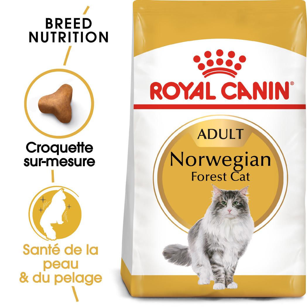 Royal Canin Norvégien pour chat