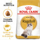 Royal Canin Ragdoll pour chat