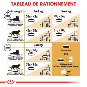 Royal Canin Ragdoll pour chat