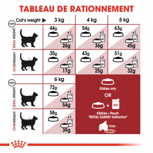 Royal Canin Chat Fit 32