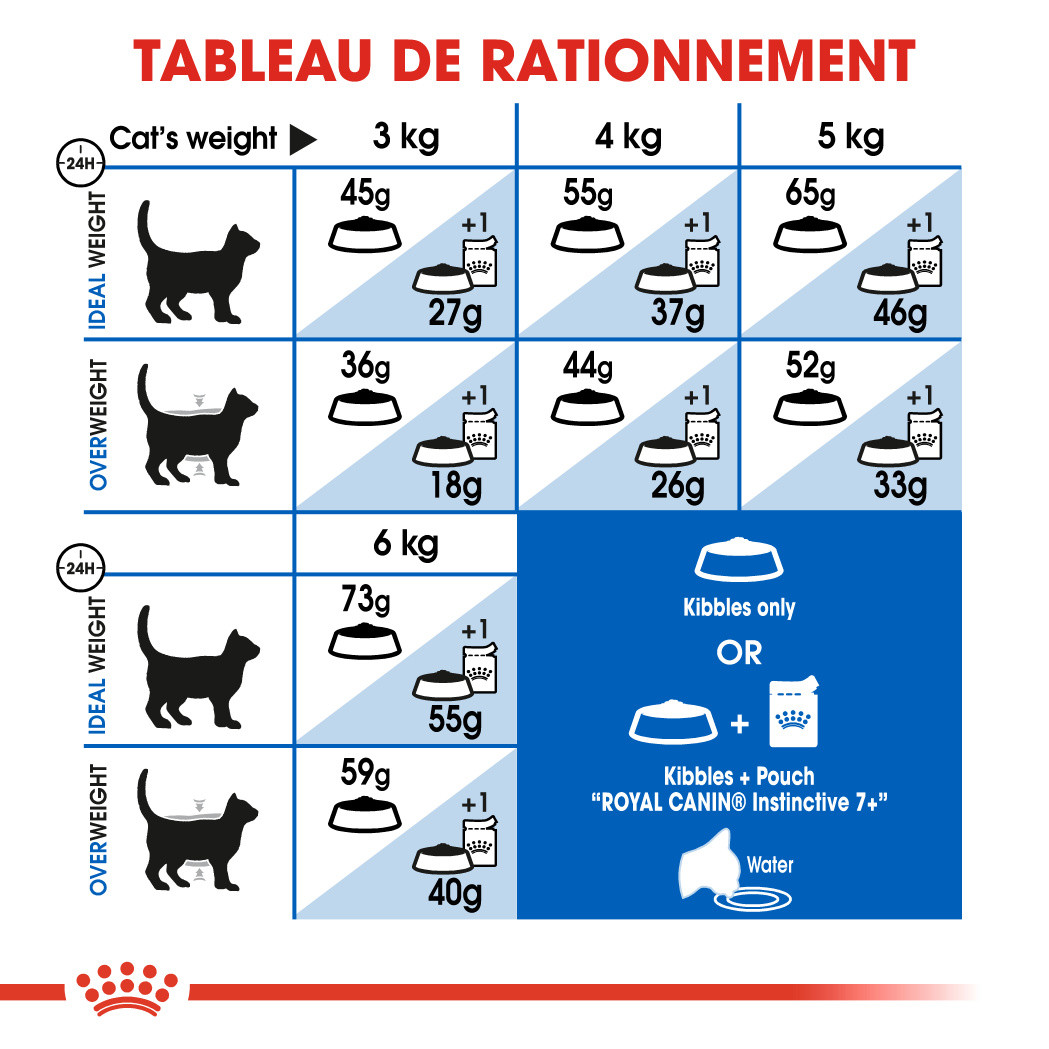 Royal Canin Chat Indoor 7+
