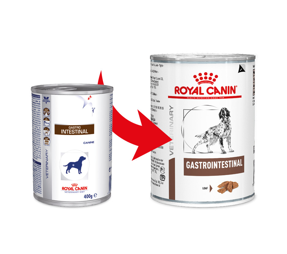 Royal Canin Veterinary Diet Gastro Intestinal boîtes pour Chien - 400 g