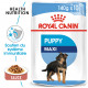Royal Canin Maxi Puppy Sachets pour chiot