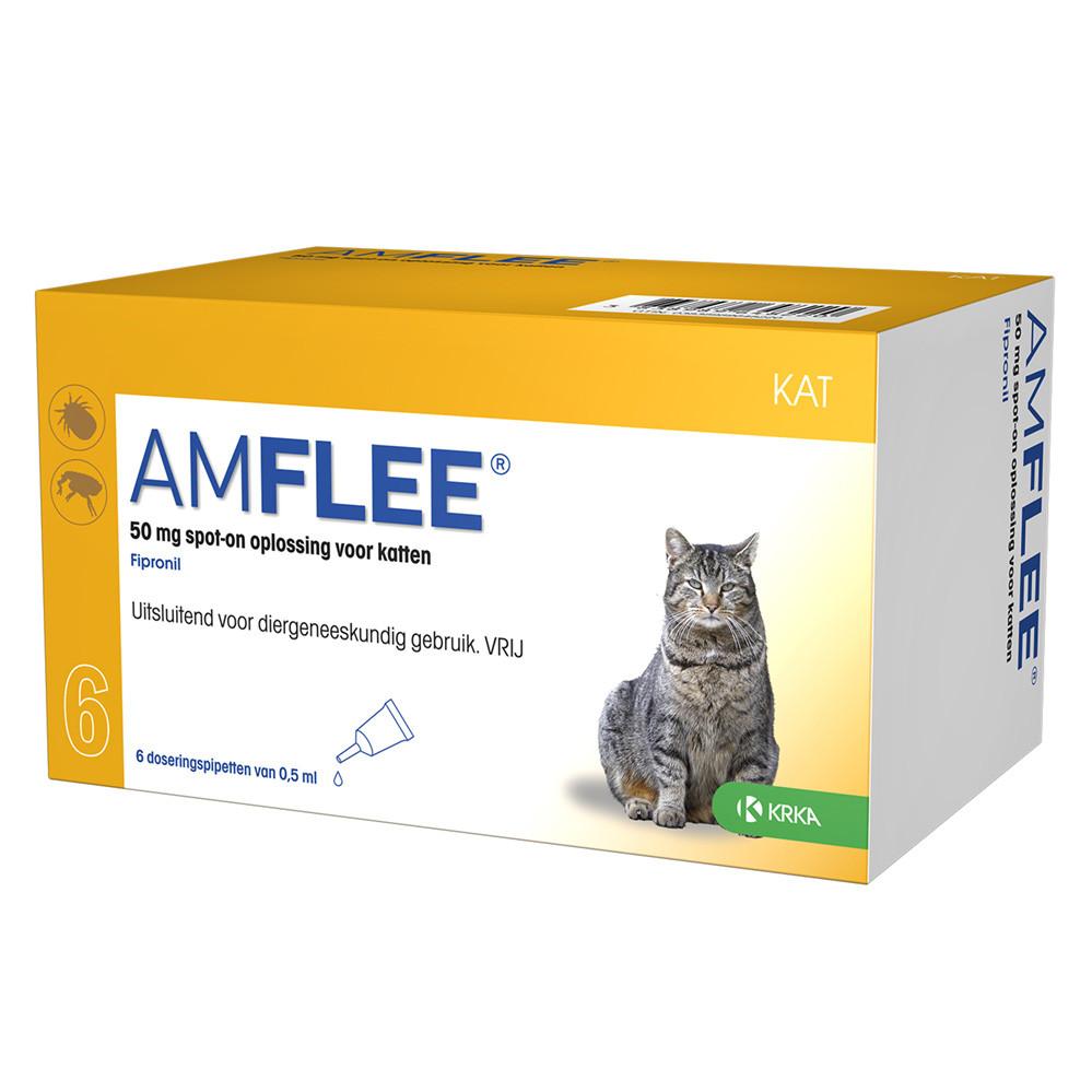 Amflee 50 mg spot-on kat