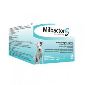 Milbactor Kleine Hond/Puppy
