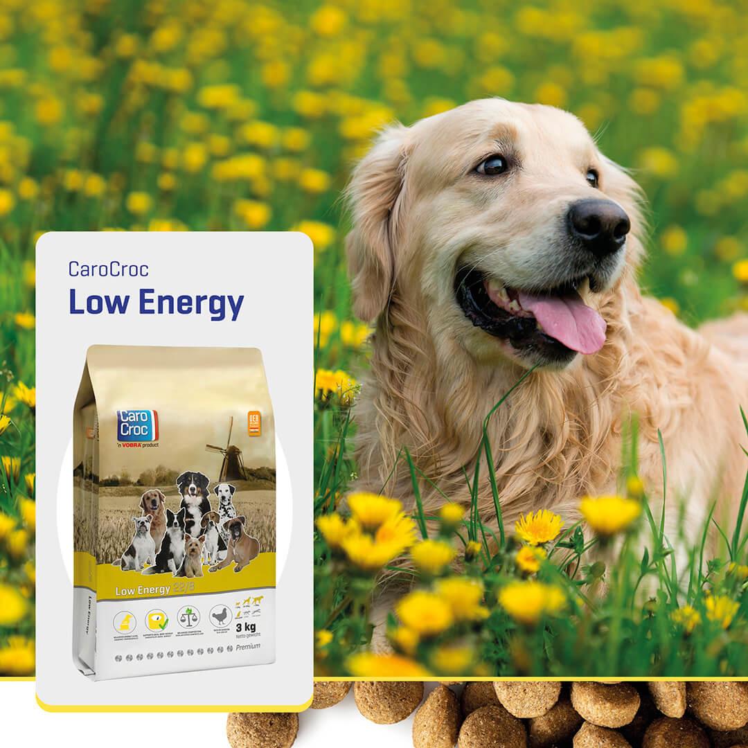 Carocroc 22/8 Low Energy Hondenvoer