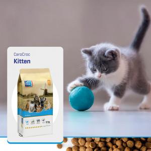 Carocroc Kitten kattenvoer