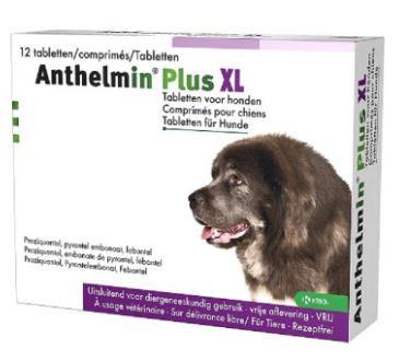 Anthelmin Plus XL voor honden
