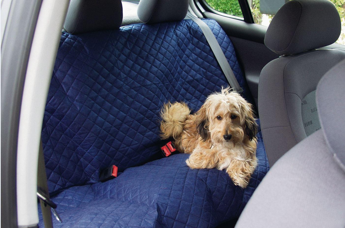 Van Riel Couverture de voiture bleu pour chien