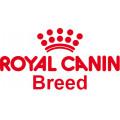 Royal Canin Race pour chien