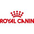 Boîtes Royal Canin pour Chien