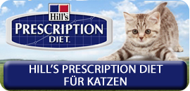 hills prescription diet Katze