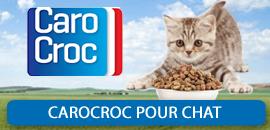 carocroc pour Chat