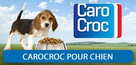 Carocroc pour Chien