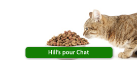 Hill's pour Chat