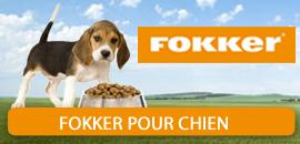 Fokker pour Chien